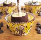Frozen Chocolate Banana Monkey Pops
