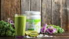 Vega One Nutritional Shakes: All-in-One Vegan Fuel