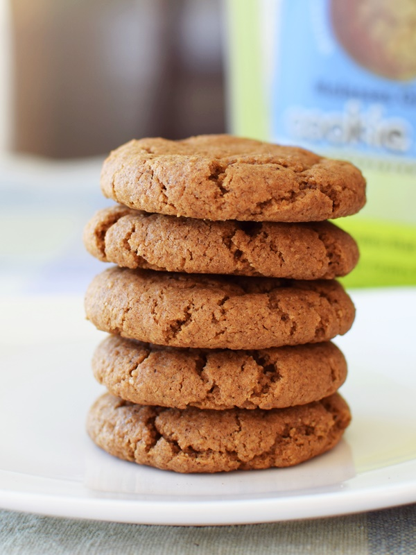 Among Friends Gluten-Free Hand-crafted Baking Mixes: Molasses Ginger pictured (Dairy-Free Review)