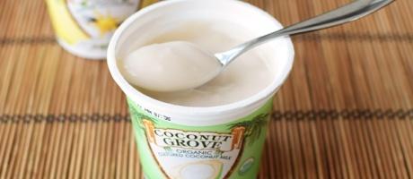 Coconut Grove Organic Coconut Milk Yogurt
