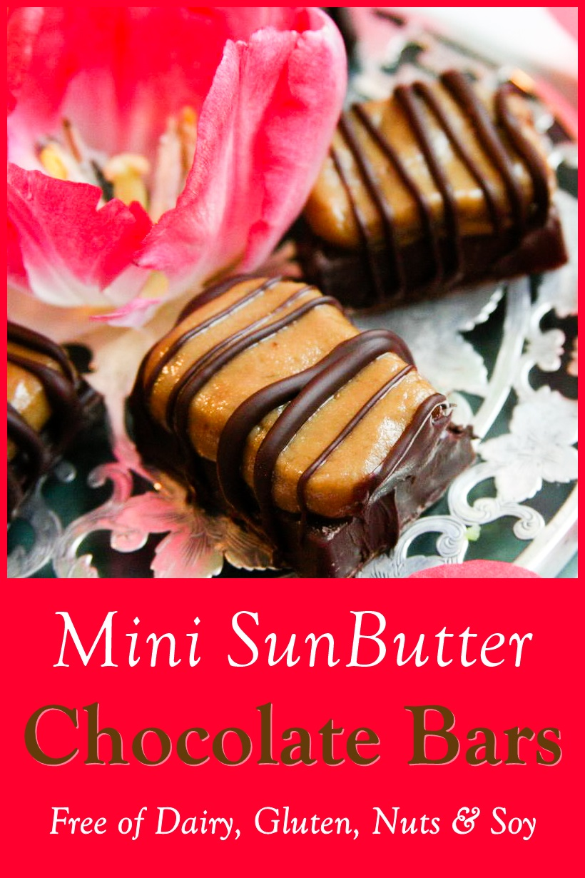 Mini Sunbutter Chocolate Bars Recipe - Easy, fun, homemade treat that can vegan, dairy-free, gluten-free, nut-free, soy-free, and paleo.