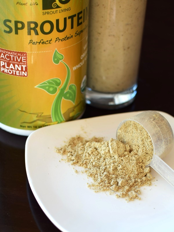 Sprout Living Sprotein with Pumpkin Seed Protein Powder - Organic, Raw, Dairy-Free, Gluten-Free, Vegan