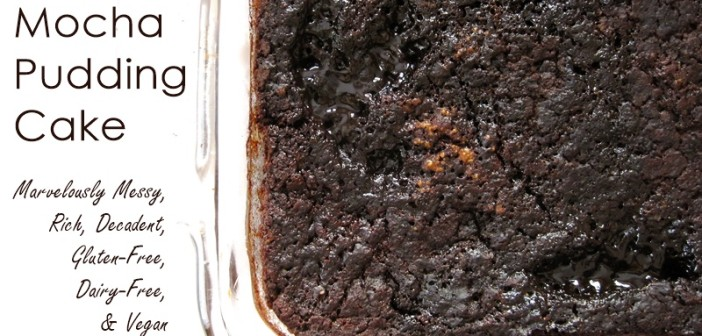 Fudgy Mocha Pudding Cake