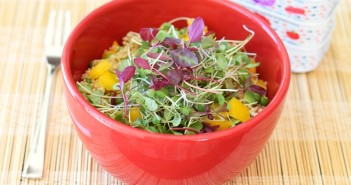 Greens and Grains Bowl - Quinoa Salad with Lemon Vinaigrette, Microgreens or Spinach and Wild Sardines