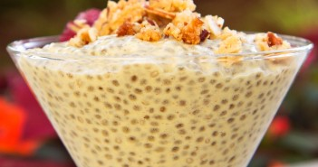 Spiced Mango Chia Pudding - a healthy, dairy-free treat made with warm spices and fresh mango. Gluten-free; vegan option.