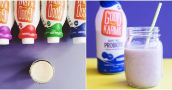 Good Karma Probiotic Cultured Flaxmilk Beverages (Dairy-free, Vegan, Top Allergen-Free, High in Omega 3 & Protein)