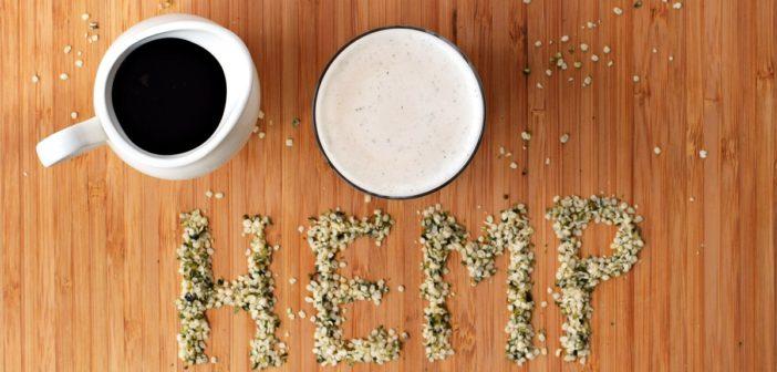 Homemade Maple Hemp Milk (Just 5 Minutes!)