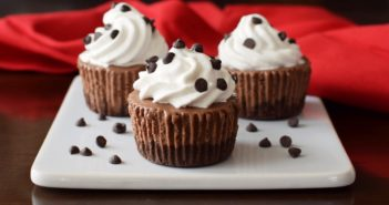 Dairy-Free Triple Chocolate Ice Cream Cupcakes - vegan, gluten-free, allergy-friendly recipe!