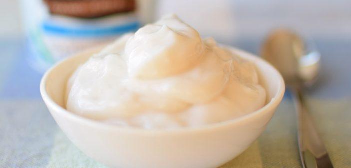 So Delicious Dairy Free Greek Coconut Milk Yogurt