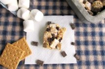 Easy S'mores Bars Recipe! Naturally dairy-free, kid-friendly & summer-ready