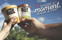 Raise a Pint Event! Dairy-Free Ice Cream Recipes, Giveaways and More