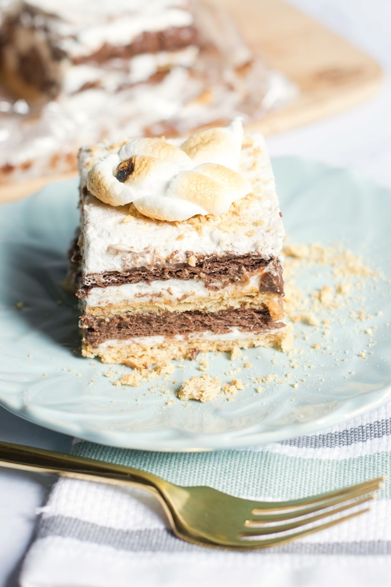 Coconut Milk Dairy Free Frozen Dessert Recipes - Vegan (Gluten-Free optional) S'mores Icebox Cake (pictured)