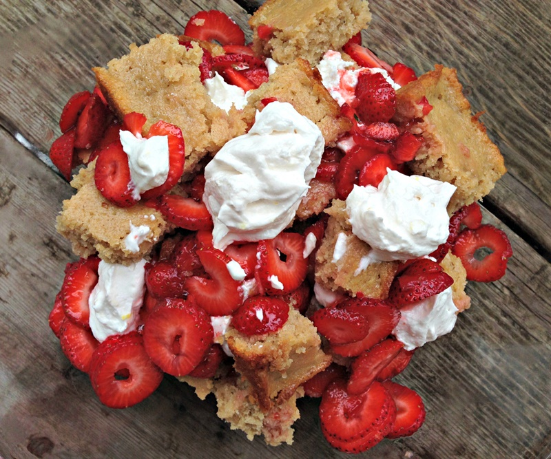 Coconut Milk Dairy Free Frozen Dessert Recipes - Vegan Gluten Free Lemon Berry Trifle (pictured)