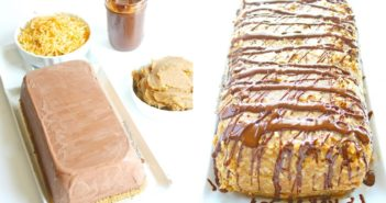 Samoa Ice Cream Cake - a Grand Prize Recipe Contest Winner! (dairy-free, gluten-free, vegan and allergy-friendly)