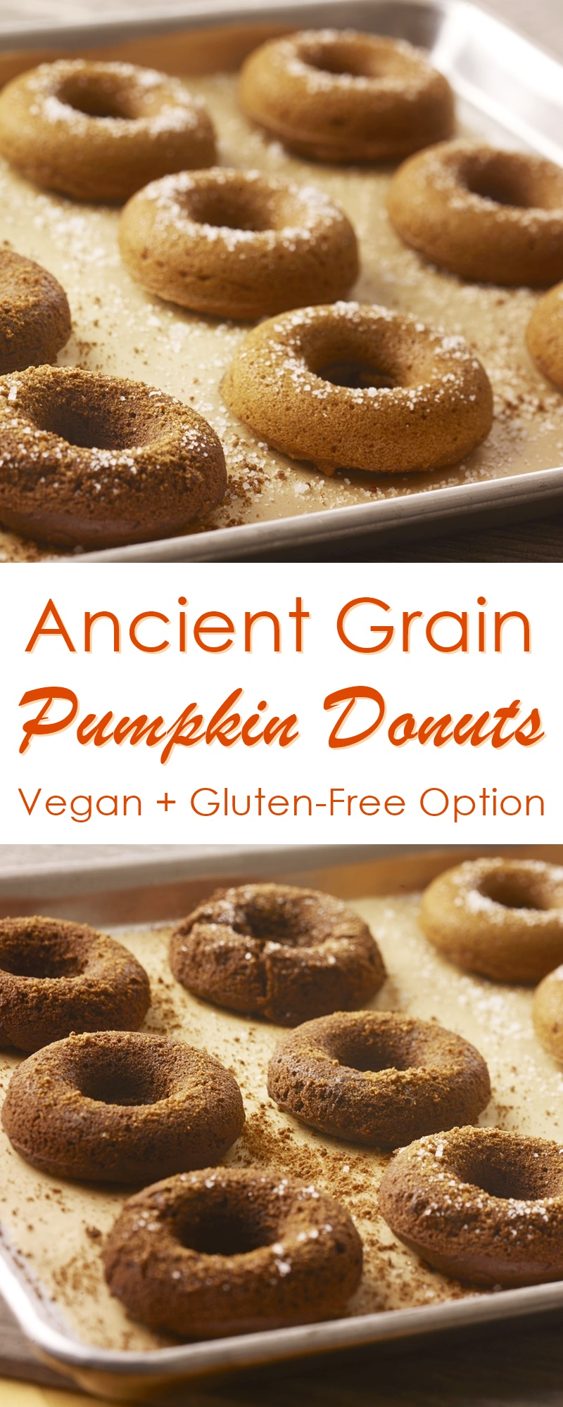 Baked Vegan Pumpkin Donuts Recipe - healthy, made with Ancient Grains (gluten-free option)