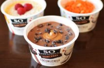 60 Dairy-Free Yogurt Mix-Ins + Cool Yogurt Packing Ideas