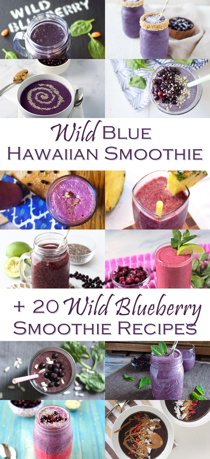 21 Dairy-Free Wild Blueberry Smoothie Recipes