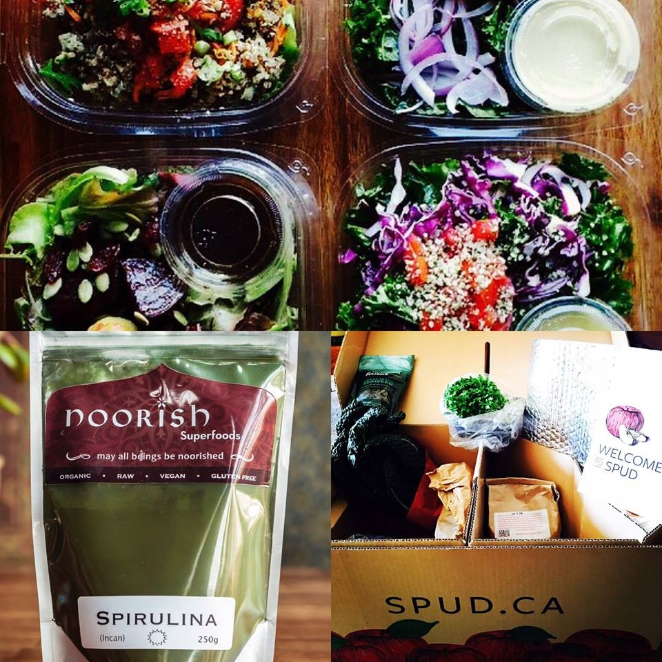 Noorish Vegetarian Eatery in Edmonton, AB offers fresh, healthy dairy-free and vegan cuisine