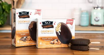 So Delicious Dairy Free Cashew Milk Ice Cream Bars (Review) - Certified Vegan, Gluten-Free and Kosher Pareve