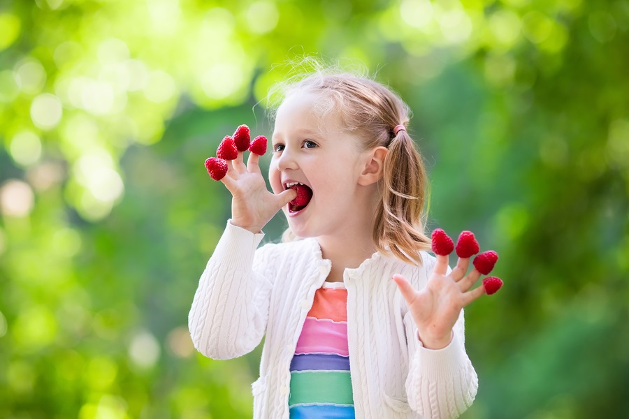 12 Top Allergen-Free Snacks for Kids (and Adults) On-the-Go! Dairy-free, egg-free, gluten-free, nut-free, peanut-free, soy-free, and vegan