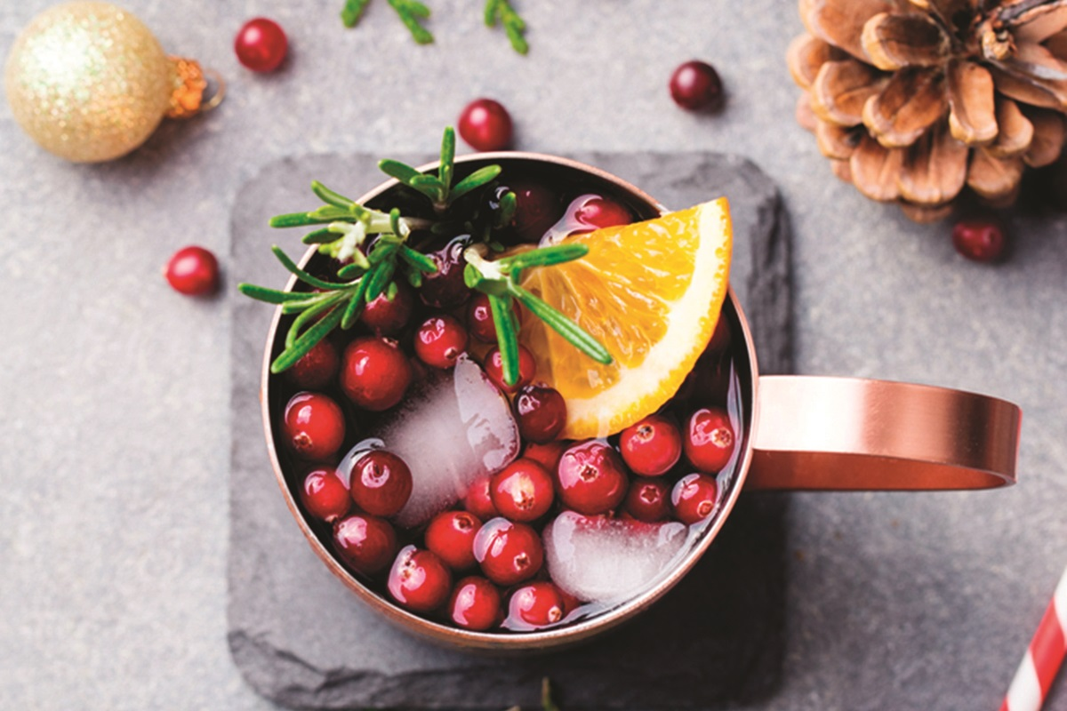 Cranberry Moscow Mule Recipe - a delicious cocktail with a festive twist
