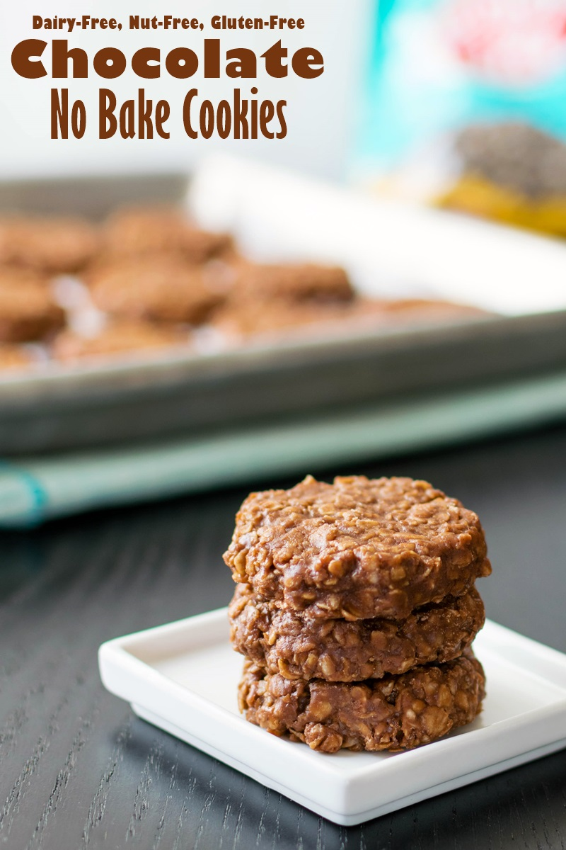 Chocolate No Bake Cookies Recipe (Dairy-Free, Nut-Free, Gluten-Free, Soy-Free, Vegan-Friendly!)