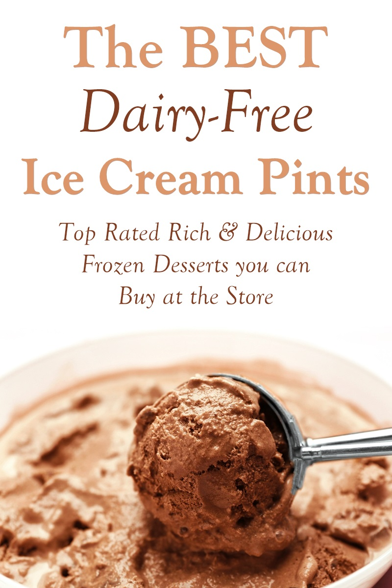 The Best Dairy-Free Ice Cream Pints that You Can Buy at the Grocer. All plant-based with options for every dietary need.