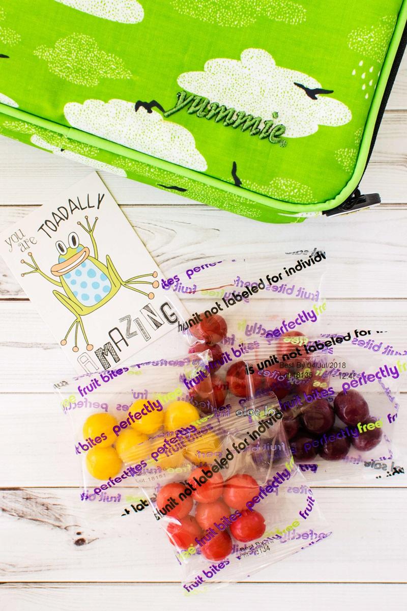 "PerfectlyFree Fruit Bites (Review) - Vegan, Gluten-Free, Allergy-Friendly ""grape like"" Snacks"
