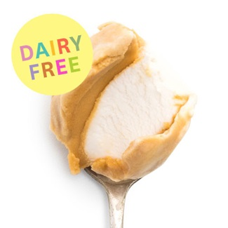 Jeni's Dairy-Free Ice Cream Pints Review - ingredients, allergen info, ratings, and more! All vegan and coconut based - 4 decadent dessert flavors.