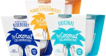 Coconut Collaborative Yogurt Alternative Review and Information - Dairy-free, Vegan, Coconut Yogurt - Rich, Creamy, and Available Internationally