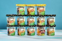 Ben & Jerry's Non-Dairy Frozen Dessert - A guide with ingredients, customer reviews, and more info on this dairy-free ice cream line. All vegan too. Pictured: Now in 16 Flavors! (13 shown)