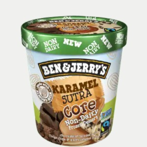 Ben & Jerry's Non-Dairy Frozen Dessert - A guide with ingredients, customer reviews, and more info on this dairy-free ice cream line. All vegan too. Pictured: Non-Dairy Karamel Sutra