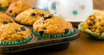 Vegan Chocolate Chip Coconut Muffins Review from Vegan for Everyone (dairy-free, egg-free, nut-free, soy-free, plant-based, and healthy!)