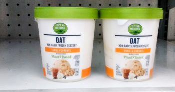 Open Nature Oat Non-Dairy Frozen Desserts Review and Info - Albertsons brand of dairy-free, vegan oat milk ice cream sold at Safeway, Vons, Shaw's, and their other stores.