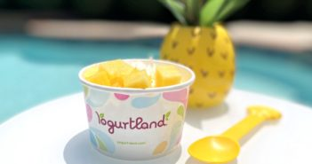 Yogurtland Frozen Yogurt Shops: Dairy-Free and Vegan Menu Guide