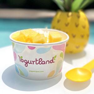 Yogurtland Frozen Yogurt Shops: Dairy-Free and Vegan Menu Guide