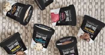 Homemade Brand Dairy-Free Ice Cream Reviews and Info - Vegan Indulgence in Seven Flavors