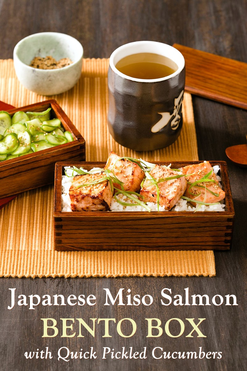 Japanese Miso Salmon Bento Box Recipe with Quick Pickled Cucumbers - naturally dairy-free, gluten-free, and nut-free, with soy-free and paleo-friendly options