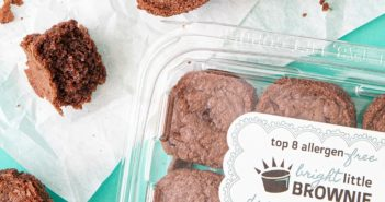 Julia's Table Brownies Reviews & Info - Vegan, gluten-free, dairy-free, egg-free, nut-free, and soy-free!