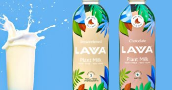 Lavva Plant Milk Reviews and Info - Dairy-Free Pili Nut Milk Beverage made without added sugars