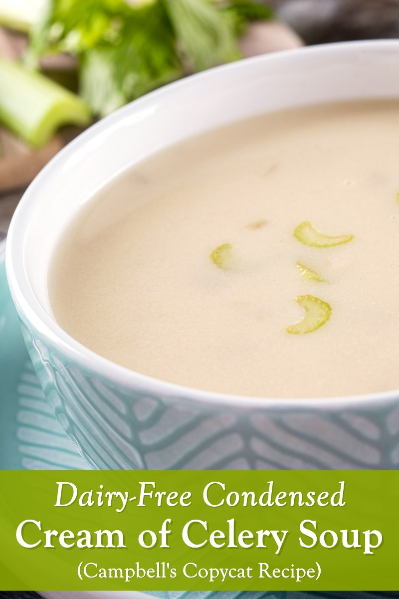 Dairy-Free Condensed Cream of Celery Soup Recipe (Campbell's Copycat!). Fast, easy and cheap. Also allergy-friendly and vegan. Works great in recipes, or as soup, like pictured.