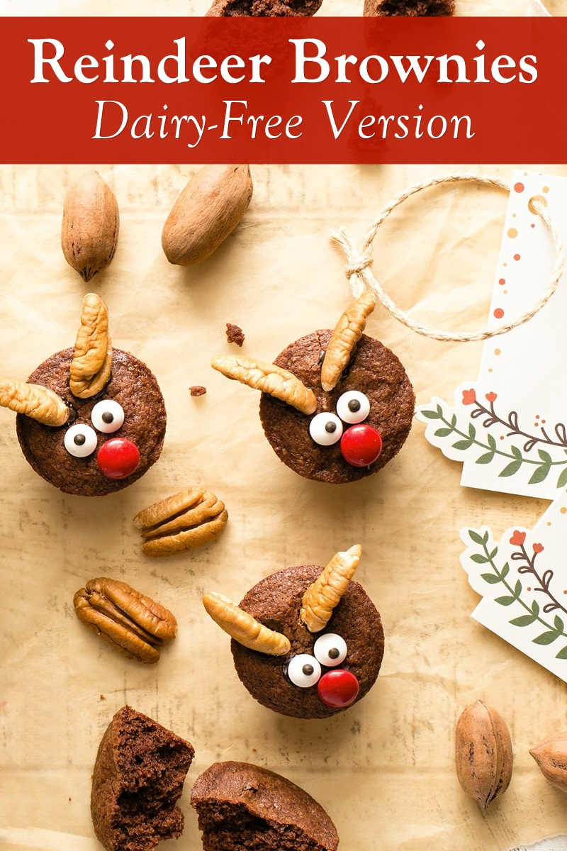 Dairy-Free Reindeer Brownies Recipe - Fun, easy, brownie bites made dairy-free! Includes gluten-free and other special diet options.