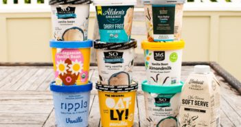 Dairy-Free Vanilla Ice Cream Taste Test - Get the Scoop on Which Ones Ranked Best! All Vegan, Mostly Gluten-Free, Soy-Free, and More ...