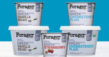 Forager Dairy-Free Greek Yogurt Reviews & Info - Made with Vegan Cashewmilk and Coconutmilk and Live Active Cultures