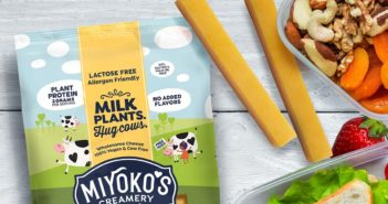 Miyoko's Plant Milk Cheese Sticks Reviews and Info - A better cheddar! Unique new formula that's made without top allergens, but with nutritious ingredients. Reviews and Info here ...