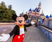 Disneyland: Your Dairy-Free Guide to Food & Dining at the Parks