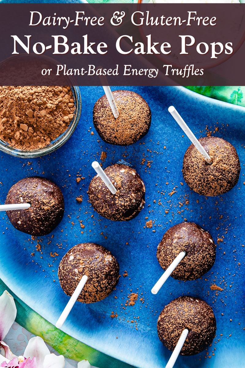 No-Bake Chocolate Cake Pops Recipe (Healthy, Plant-Based, Gluten-Free, Dairy-Free, Grain-Free, Soy-Free, Vegan, and Raw) - great treat or snack for lunch boxes!